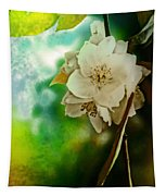Soft Light Tapestry