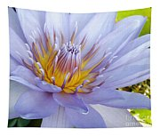 Soft Mauve Waterlily Tapestry