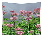 Softest Pink Tapestry