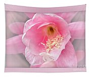 Soft..pink..delicate Tapestry