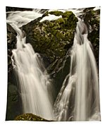 Sol Duc River Cascade Tapestry
