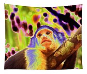 Solarized White-faced Monkey Tapestry