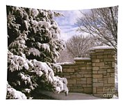 Solid Winter Tapestry