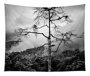 Solitary Tree Tapestry