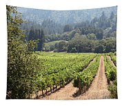 Sonoma Vineyards In The Sonoma California Wine Country 5d24515 Square Tapestry