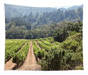 Sonoma Vineyards In The Sonoma California Wine Country 5d24518 Tapestry