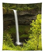 South Silver Falls 1 Tapestry