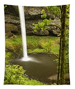 South Silver Falls 2 Tapestry
