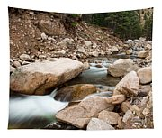 South St Vrain Canyon Autumn View Tapestry