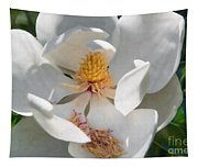 Southern Magnolia Blossom Tapestry