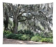 Southern Trees Tapestry