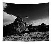 Southwestern Beauty In Black And White Tapestry