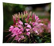 Spider Flower Tapestry