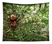 Spider In Its Web Tapestry