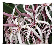 Spider Lily Tapestry