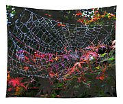 Spider Web Tapestry