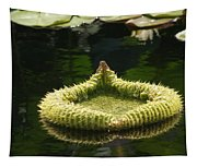 Spiky Lily Pad Tapestry