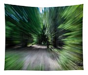Spinning Through The Woods Tapestry