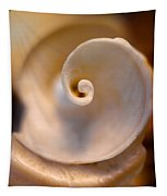 Spiral Shell Tapestry