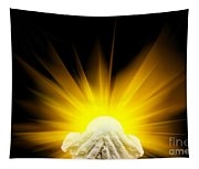 Spiritual Light In Cupped Hands Tapestry