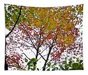 Splash Of Autumn Colors Tapestry