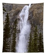 Splendor Of Takakkaw Falls Tapestry