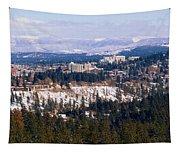 Spokane View 2-4-14 Tapestry