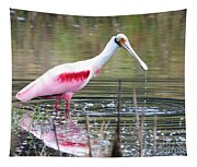 Spoonbill In The Pond Tapestry