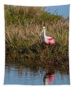 Spoonbill Island Hoping Tapestry