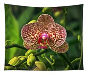 Spotted Orchid Tapestry
