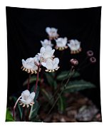 Spotted Wintergreen 5 Tapestry