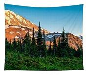 Spray Park Panorama Tapestry