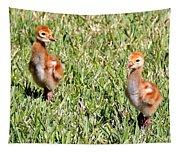 Spring Chicks  Tapestry