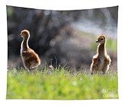 Spring Chicks In The Sunshine Tapestry