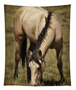 Spring Creek Basin Wild Horse Grazing Tapestry