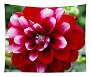 Red Spring Flower Tapestry