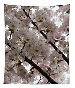 Spring Is Beautiful - A Cloud Of Pastel Pink Blossoms Tapestry