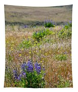 Spring Lupines And Cheatgrass Tapestry