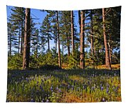 Spring Lupines In The Forest Tapestry