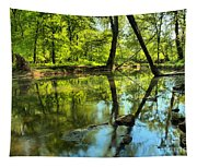 Spring Mill Reflections Tapestry
