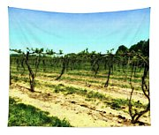 Spring Vineyard Ll Tapestry