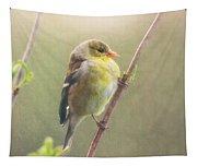 Springtime Goldfinch Tapestry
