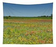 Springtime In Texas 2 Tapestry