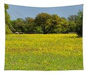 Springtime In Texas 3 Tapestry