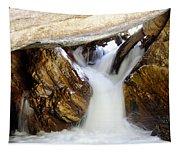 Spun Silk - Sequoia National Park Tapestry