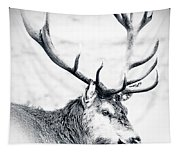 Stag In Black And White Tapestry