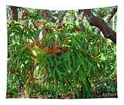 Staghorn Fern Tapestry