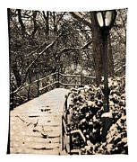 Stairway In Central Park On A Stormy Day Tapestry