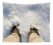 Standing In The Snow Tapestry