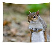 Standing Squirrel Tapestry